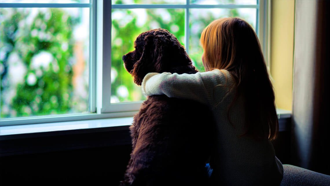 Replacing your residential windows